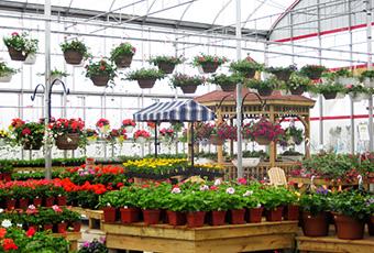 Jewell's Garden Centre