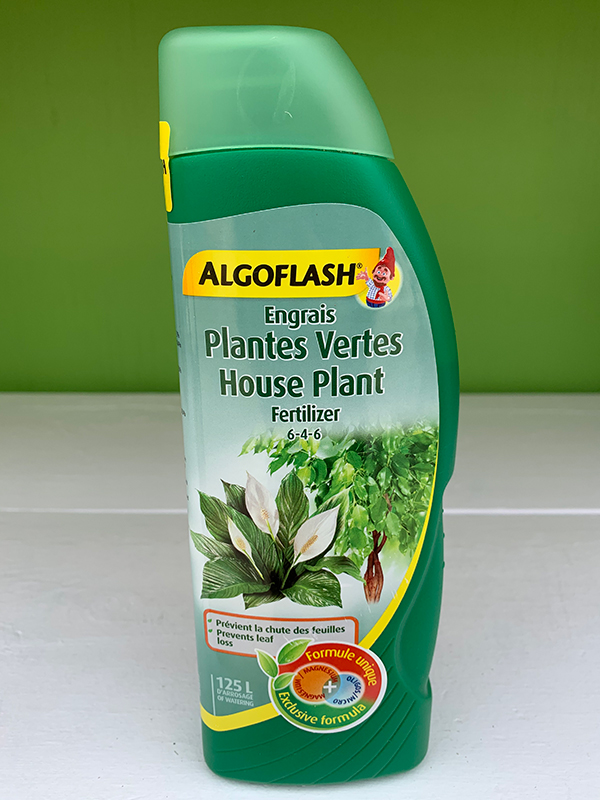 Algoflash House Plant Fertilizer